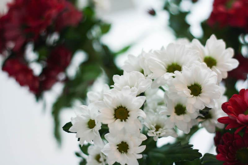 interflora-concours-2-ans-blog-3